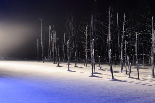 冬の青い池の幻想的な美しさ